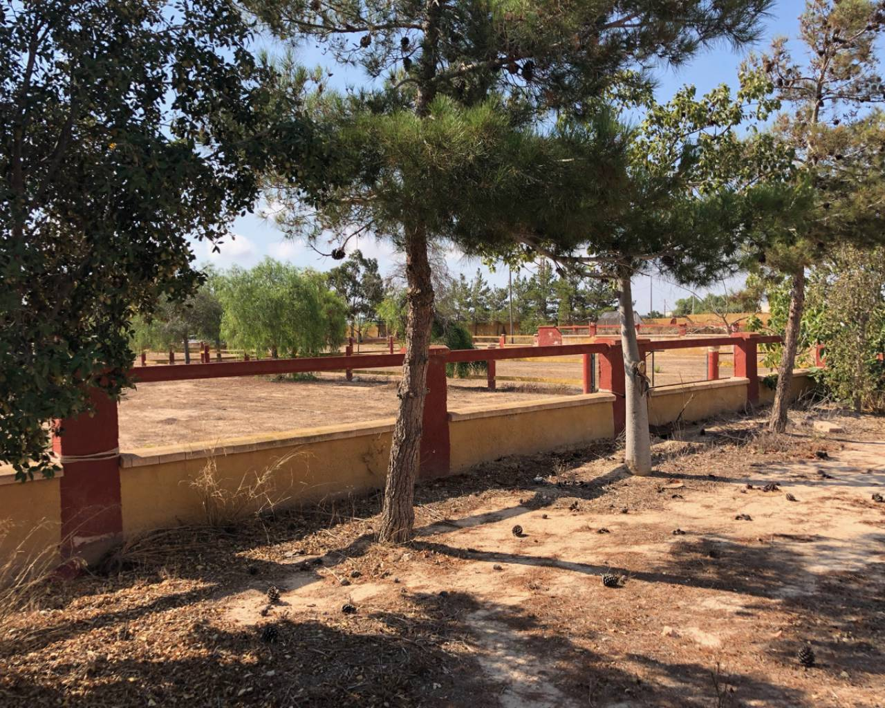 Resale - Finca / Country Property - Los Montesinos